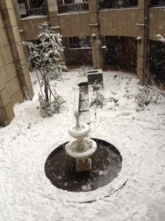 2014年積雪.JPG